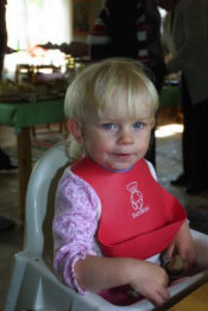 Yngsta tillskottet i släkten är Michelle Lindgren som är 2 år.
