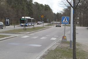 Många genar över Björnövägen till hållplatsen, istället för att gå på övergångsstället, i höjd med Kunskapsskolan. I förgrunden syns farthindret Actibump.