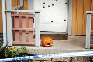 Ett tjugotal skott avslossades mot polismannens villa, där han och hans familj låg och sov.