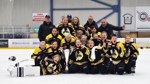 Fagersta AIK U12 vann i Uddevalla.