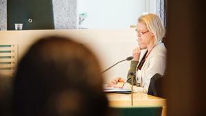 Bloggerskan under rättegången mot henne i april. Hon sitter till höger om sin advokat Pia Björstrand.