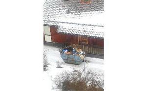 I containern vid matsalen sågs krossat porslin med brunnsviksemblem. Rektor Sofie Wiklund säger att det mesta och bästa av porslinet körts till Häggvikskolan i Stockholm. FOTO PRIVAT