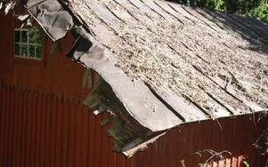 Taket på den gamla livsmedelsbutiken Skuggbo har förstörts av en gren från det träd som i höstas blåste ned över huset. Foto: Eva Langefalk/DT