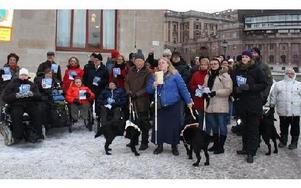 Torsdagsaktionen och Dalaupproret vid Rosenbad. Foto: Åsa Nilsson