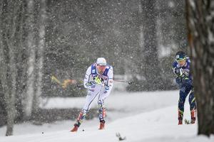 Johan Olsson i herrarnas femmil under skid-VM i Falun i mars 2015.