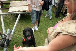 Gerd Melin är ute i folkvimlet med den tvååriga terapihunden Laktris. Lakrits ska hjälpa pensinärer på äldreboenden. – Det är bra för honom att träna bland alla människor, säger matte