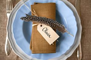 Lång pärlhönsfjäder, naturbast och oblekt prislapp som placeringskort.