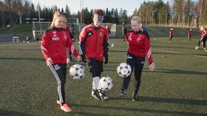 En viktig VIF-trio, från vänster:Sandra Högberg, Helena Löwdahl och Carolina Lång.