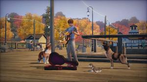 Häst, hund och katt i nya The Sims 3: Husdjur.Foto: Electronic Arts