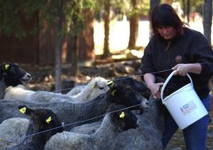 Det är mycket jobb med djuren, men de ger så mycket tillbaka, menar Lisa Rytter.
