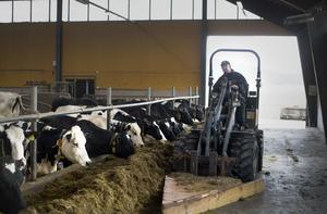 Kärvt för mjölkbönder