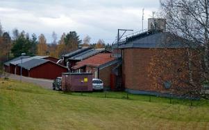 Reningsverket i Rättvik kan komma att byggas om för 65 miljoner kronor. Foto: Per Malmberg/DT