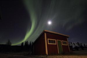 Norrsken och månen tisdag kväll hemma på gården i Bredbyn, foto: Liss Myrås.