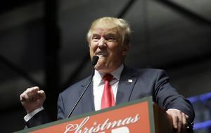 Väljare föredrar amatörer som Donald Trump framför mer erfarna politiker.