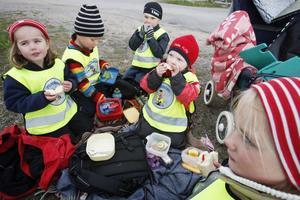 Det är mysigt att äta matsäck ute. Det tycker Klara Hedberg Orin, 3 år, Karl Hjelm Forselius, 3 år, Liam Blixt, 5 år, Bella Grönholm, 3 år och Lova Blixt, 5 år.