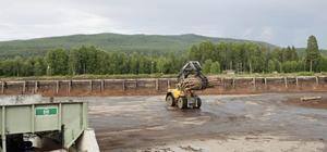 Under det sista ordinarie arbetspasset fanns det omkring 6 000 timmerstockar kvar att såga innan det var tomt på sågens timmergård.