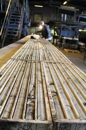 En 92 meter lång borrkärna ligger uppdelad i sektioner för att chefsingenjören Lars Dahlenborg ska kunna undersöka den.