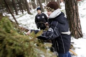 AXEL, 10. Axel Westin får skjuts till skolan och hem igen. Han är ute och leker på rasterna, spelar bandy och bygger kojor. I genomsnitt går han över 10 000 steg om dagen – och då är hockeyträningarna inte inräknade.
