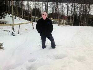 En nyvaken björn passerade rakt igenom Reidar Kjelviks gård, bara 50 meter från bostadshuset.
