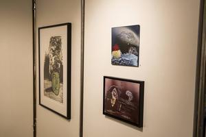 Under Konstrundan i Ovansåker ställer konstnären Brita Weglin ut på Edsbyns museum.