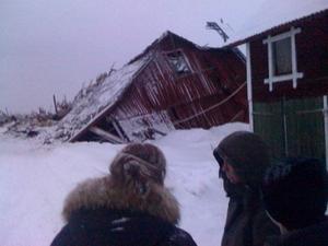 30 kor fanns inne i ladugården när den rasade.