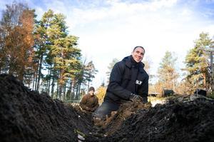 Tusen sinom tusen tulpanlökar ska planteras inför den årliga tulpanfestivalen. Krigsveteranen Steve Bradley finner ro i arbetet.
