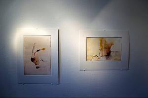 Bertil Hansson visar foton, målningar och akvareller på Ahlbergshallen.