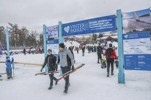 Vinterparken. Fotograf: Lars Ljungmark