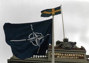 I boken spekuleras det om Natos Stay-behind-styrkor var inblandat i mordet på Olof Palme.