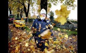 På kyrkogården i Stora Tuna går personalen runt och blåser ihop mängder med löv varje höst. Anna Dafgård är säsongsarbetare för andra året. FOTO: LINA AXELSSON BERG