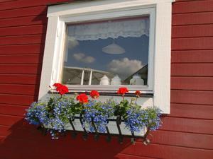 Vårt fönster i stugan med speglingar av