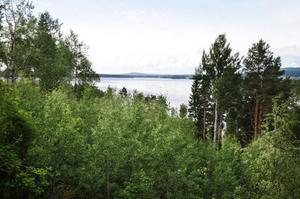 Nu ska regeringen avgöra om det får byggas villor och fritidshus öster om Ljusnan i Vallsta.