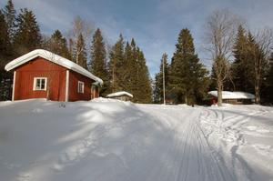 Nästan på toppen av södra Hälsinglands högsta berg, Stafsberg, har Alfta Skogskarlar en fin liten anläggning. På söndag arrangerar de trationsenligt Skidans dag där.