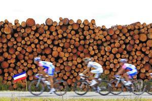 DE BÄSTA? I morgon går Tour de France i mål, i Paris. Sedan analyseras alla dopingprov för att se vem som faktiskt vann