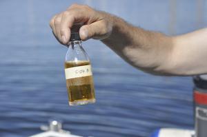 planktonprov. Växtplanktonnivåer mäts med hjälp av jodföreningen lugol.