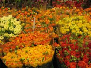 VÄRDA ATT VÅRDA. Fråga din blomsterhandlare hur blommorna i buketten ska skötas, då håller de längre!FÄRGPRAKT.  Ranunkler i alla färger skapar en känsla av sommar.