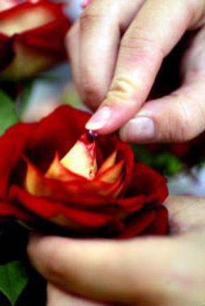 Det är de små detaljerna som gör det, som en liten pärla i rosens mitt.
