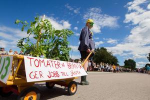 Men en alldeles egen liten tomatodling skämtade Juliana Haglund om Bränta-planerna.