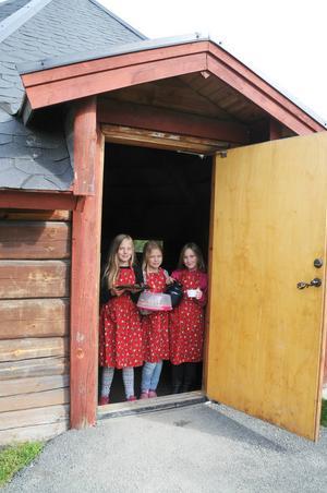 Nellie Svanberg, Indra Glad och Emilia Kvist välkomnar till Café Nemi i Bräckes lekpark.