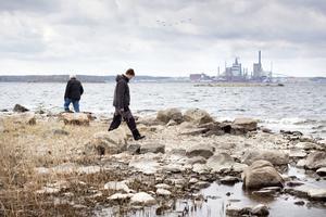 spanar efter olja. Trots noggrannt sökande hittade kommunen inte några fler oljerester på södra Römaren. Troligen försvann det mesta i samband med den stora saneringen i höstas.