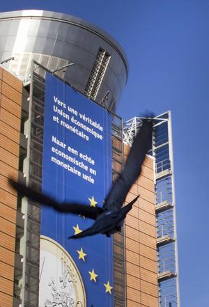 Bristen på demokrati hotar EU:s överlevnad