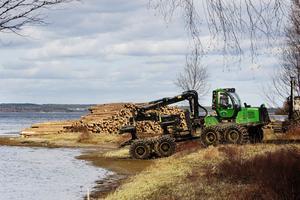 Hittills har 450 kubikmeter tagits ut av de 3 000 kubikmeter som ska tas om hand på Rödön.