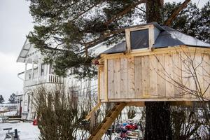 När stormen tog vindskyddet valde familjen att göra en trädkoja av det istället.