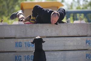 Harald Franzheld, räddningshundförare från Tyskland, och hunden Gismo tränar sök bland betongskrot.