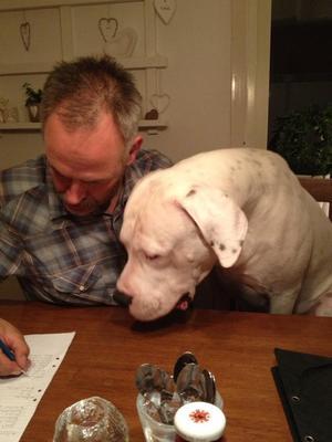 Casper kollar om husse beställer några goda ben.