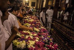 Trängseln är alltid stor under de dagliga ceremonierna i tandens tempel, Sri Dalada Maligawa, i Kandy.