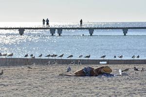 Du är förlåten om du nickar till på stranden i Key West. Sådan är atmosfären.    Foto: Anders Pihl/TT