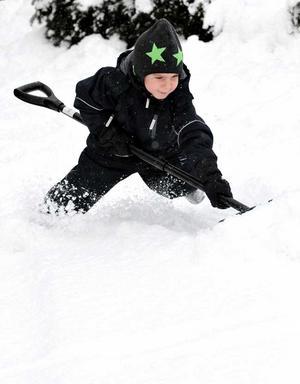 All snö har gjort snöskyffeln till en åtråvärd vara i handeln.