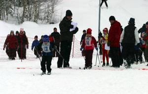 Nästan 200 startande släpptes iväg när klassiska Härjulfa avgjordes i Ytterhogdal.