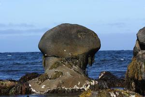 Evert Taube? Marianne Ersson fick direktassociationer när hon passerade denna stenformation vid havet.